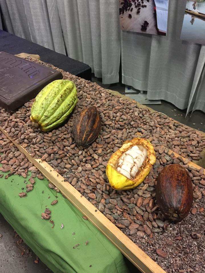 chocolat et cacao, galerie d'image qui sommes-nous
